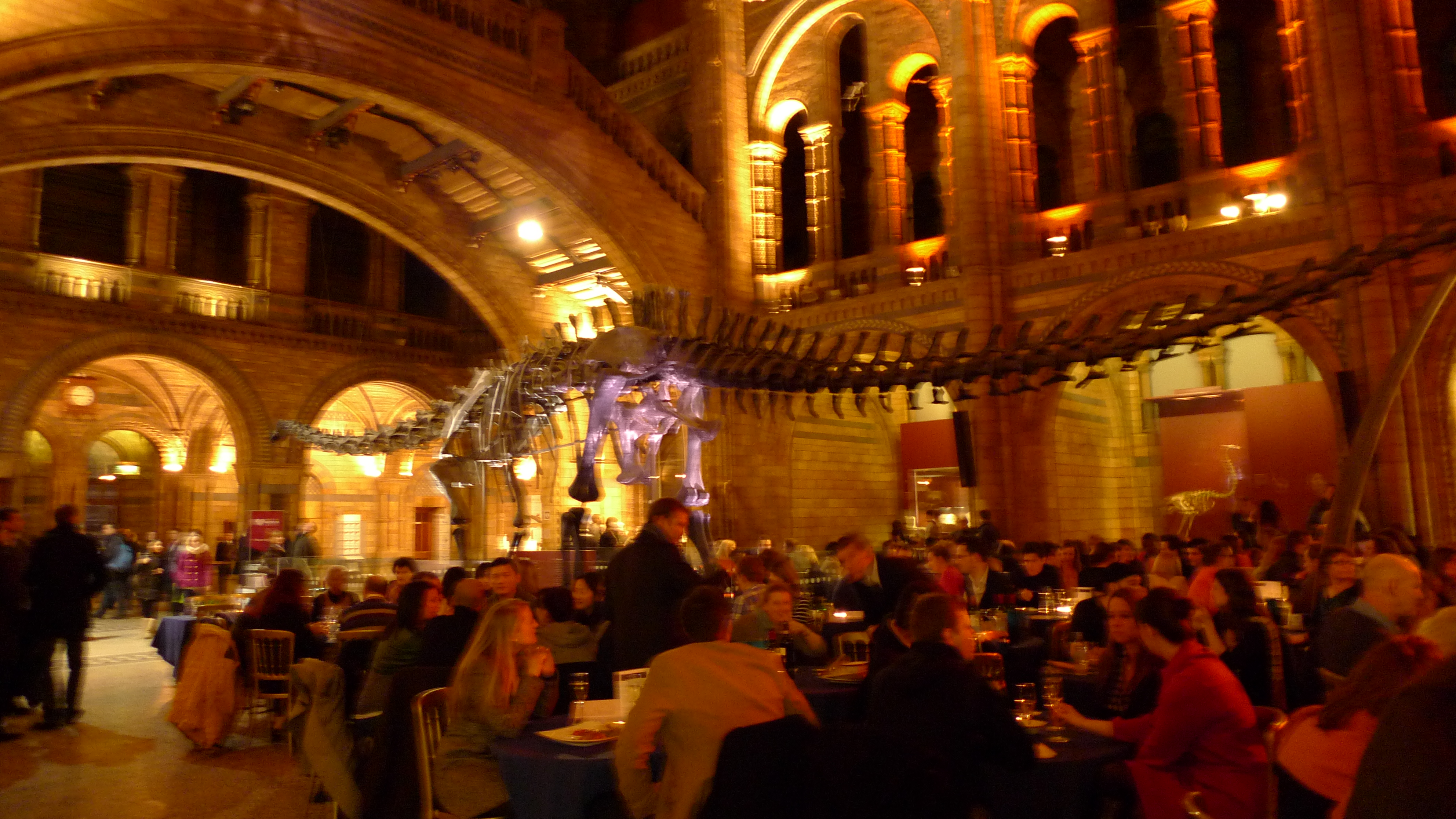Museum Lates London Natural history museum lates the happiness project london c me sisterspd